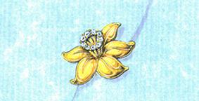 winston fleur 1a.jpg