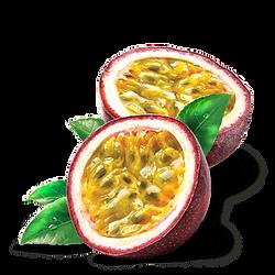 CDF-Fruit-de-la-passion-ingredients-min.