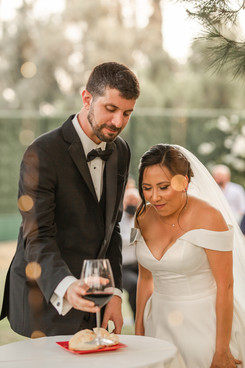 diana+jesse-wedding (89 of 209).jpg