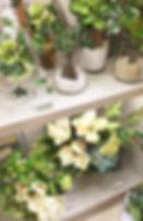 8月image5.jpg