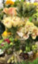 7月image1.jpg