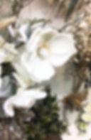 11月image5.jpg