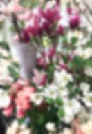 1月image3.jpg