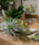 春 フレームフラワーアレンジ ローズ パープル ピンク PRIMA ¥13,000+税