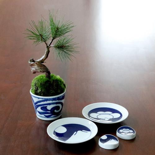 植物→松3本 食器→komon小皿×箸置