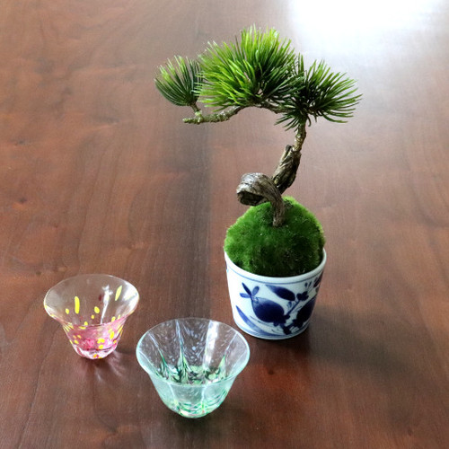 植物→松吹き流し 食器→ぐい呑み