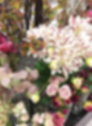 10月image4.jpg