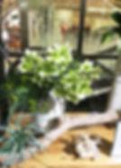 8月image3.jpg