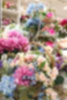 5月image2.jpg