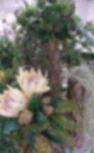 7月image2.jpg