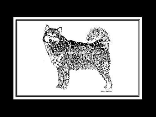 Alaskan Malamute Print