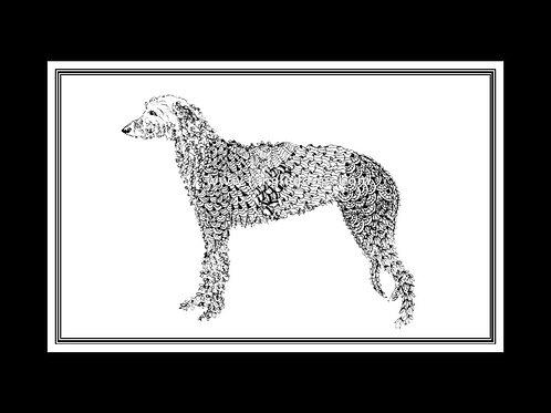 Scottish Deerhound Print