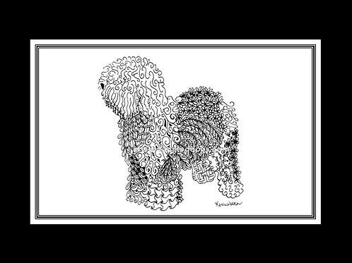 Old English Sheepdog Print