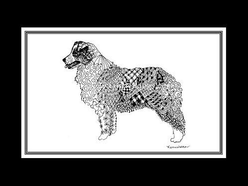 Australian Shepherd Print