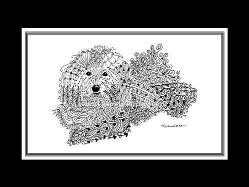 Coton de Tulear Print