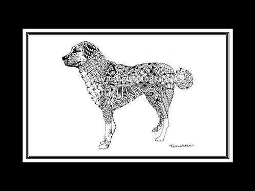 Anatolian Shepherd Dog Print