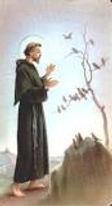 St Francis.jpeg