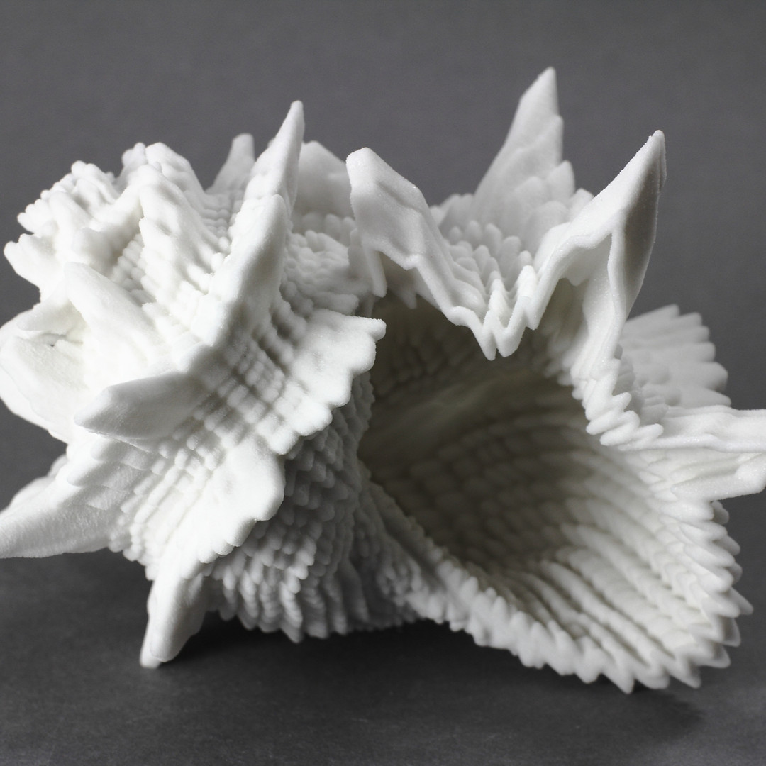 img_0790_seashells_2400px.jpg