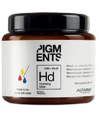 Hd Mask for slightly dry hair | Pigment