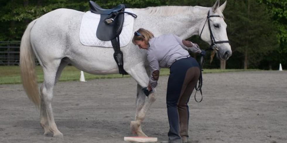 RESCHEDULED: November    SURE FOOT® Equine Stability Workshop with Wendy Murdoch (1)