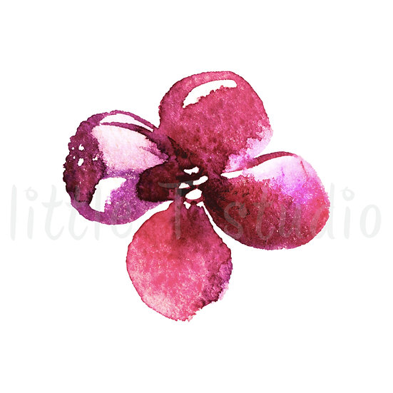 Purple Clematis Floral Watercolor Stickers - Style 1150