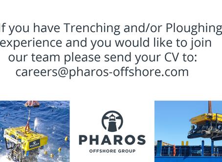 Send us your CV!