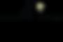 לוגו מנורה.png