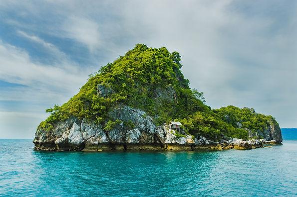 Envir_Island.jpg