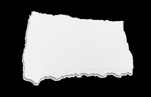 paper scrap.png