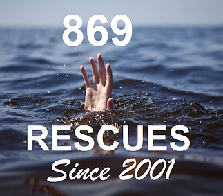 Rescue Stats 2.png
