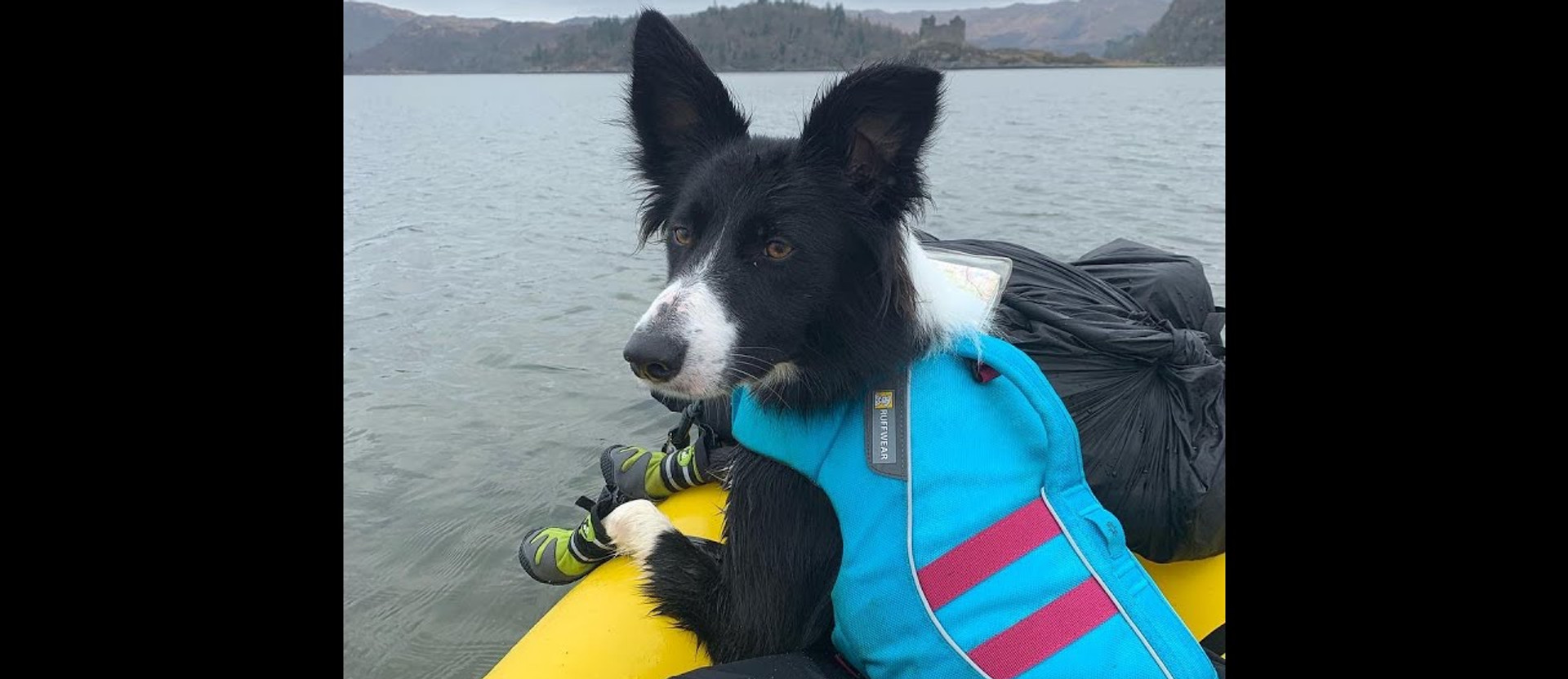 Packrafting with your Dog