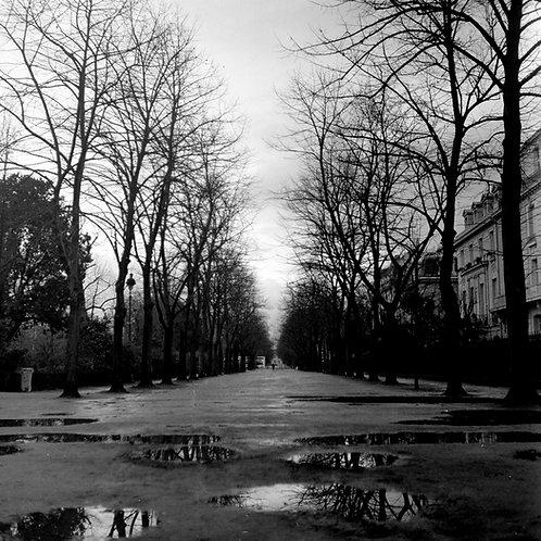 Wandering in Paris