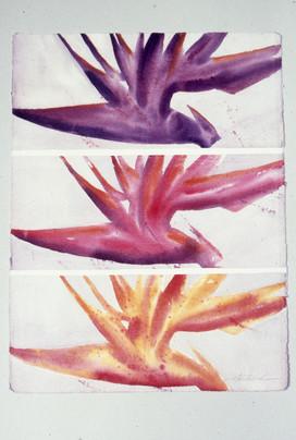 """Bird of Paradise"" series, # 2"