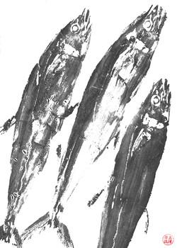 Mackerel x 3