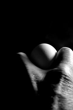 Shadow Egg