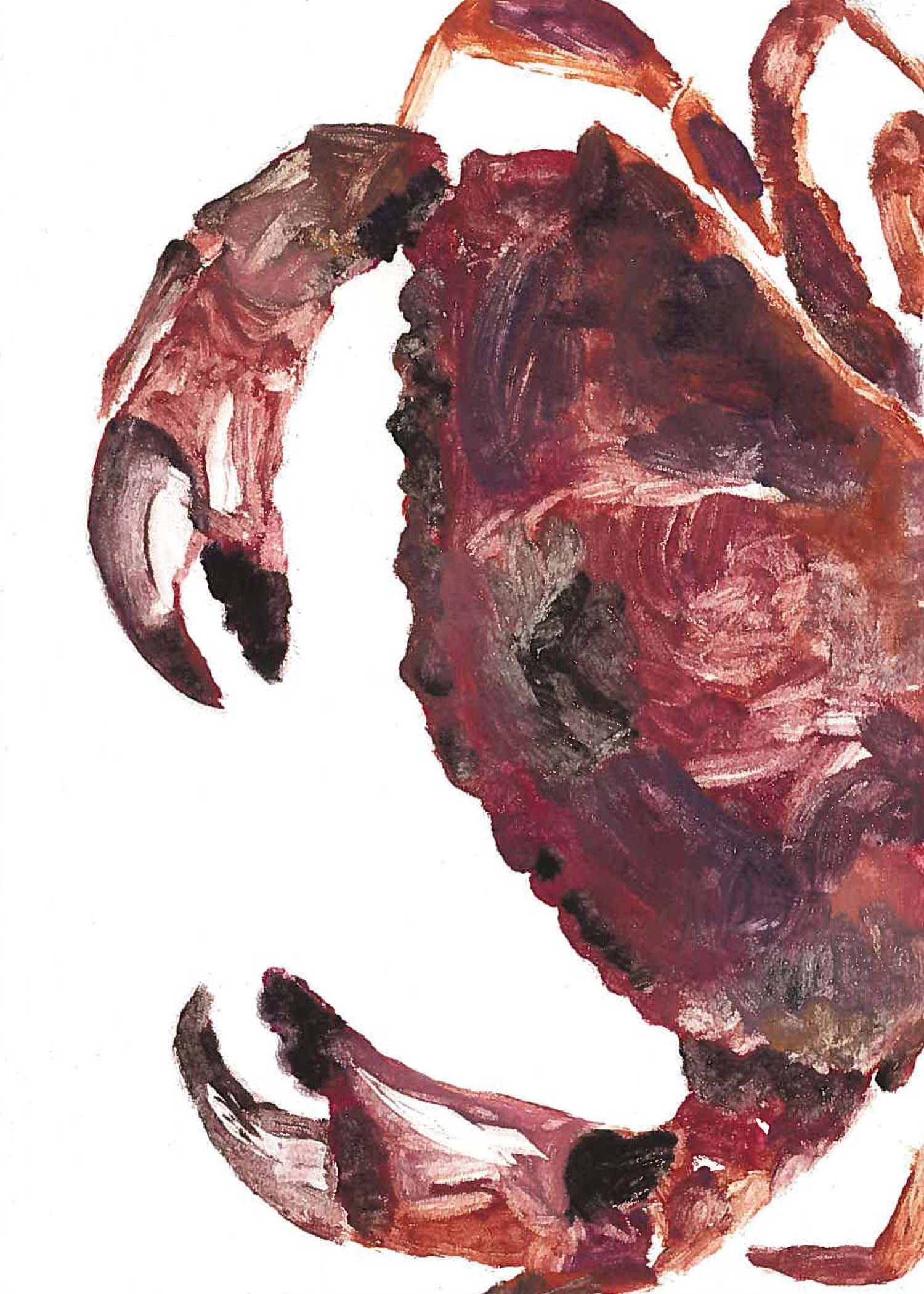Rock Crab