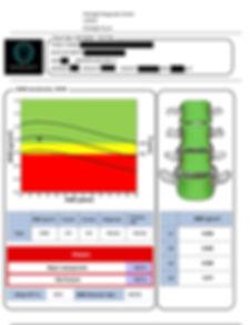 Report example- green copy JPG.jpg