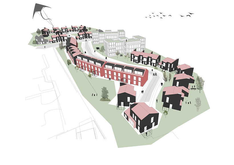 St Leonards; housing; new dvlopment; Cryer&Coe Architects; New housing;