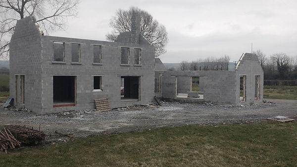 Cryer & Coe, Kilkenny, field, cottage, Irish home, Ireland, new build, contemporary design, self build