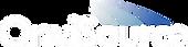 white onvisource logo