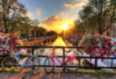Amsterdam bikes.png