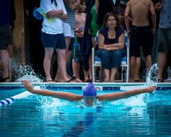 Swim Wingspan