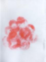 Rose_Emergencies Goda Gontyte.JPG