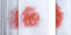 mergency Flower Drawings Goda Go  2.png