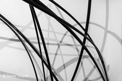 Exposition Romain Froquet 2020-5