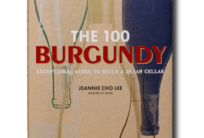 THE 100 BURGUNDY