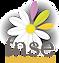 logo FNSE.png