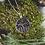 Thumbnail: U.P. Stars Necklace