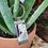 Thumbnail: Puddingstone Key Chain