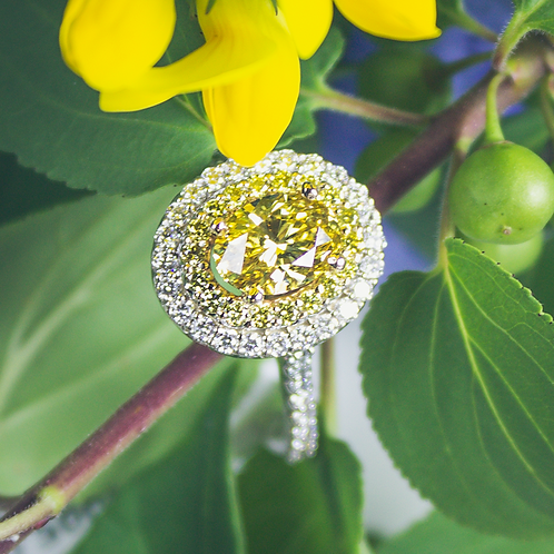 Canary Yellow Diamond Halo Ring